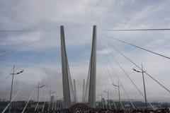 Puente de oro Vladivostok Foto de archivo