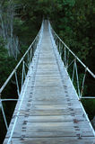 Puente de oscilación Fotografía de archivo