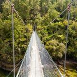 Puente de oscilación sobre el río verde Nueva Zelanda de la selva imagen de archivo libre de regalías