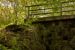Puente de piedra abandonado en bosque profundo Fotos de archivo