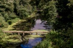 Puente de piedra en la charca Fotografía de archivo