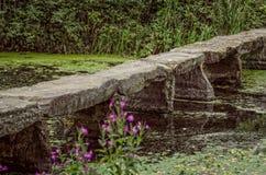 Puente de piedra en la charca Foto de archivo