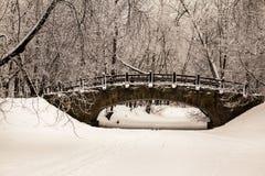 Puente de piedra viejo hermoso del bosque del invierno en la nieve en los días escarchados de la puesta del sol Árboles cubiertos Foto de archivo