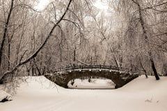 Puente de piedra viejo hermoso del bosque del invierno en la nieve en los días escarchados de la puesta del sol Árboles cubiertos Imágenes de archivo libres de regalías