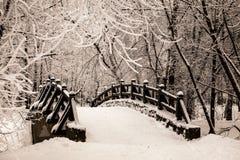 Puente de piedra viejo hermoso del bosque del invierno en la nieve en los días escarchados de la puesta del sol Árboles cubiertos Imagen de archivo libre de regalías
