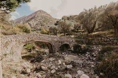 Puente de piedra viejo que lleva a la arboleda verde oliva imagen de archivo libre de regalías