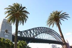 Puente de puerto de Sydney incluyendo dos palmeras Imagen de archivo