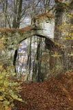 Puente de Stoney en la madera Imagen de archivo