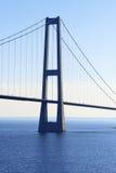 Puente de suspensión Imagenes de archivo