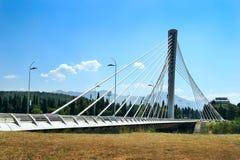 Puente de suspensión Imágenes de archivo libres de regalías