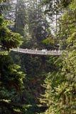Puente de suspensión de Capilano Foto de archivo
