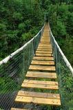 Puente de suspensión del río blanco Imagen de archivo libre de regalías