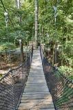 Puente de suspensión en el bosque imagen de archivo