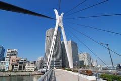 Puente de suspensión moderno Fotos de archivo