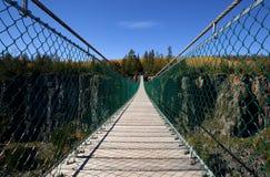 Puente de suspensión peatonal foto de archivo libre de regalías