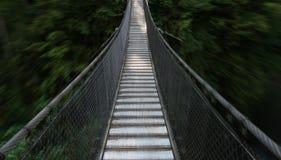 Puente de suspensión que lleva al bosque profundo Fotos de archivo libres de regalías
