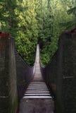 Puente de suspensión de la barranca de Lynn, Vancouver, Canadá Fotos de archivo