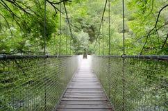 Puente de suspensión, puente de cuerda. Fotos de archivo