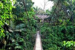 Puente de Tangkahan en el río de Buluh Imagenes de archivo