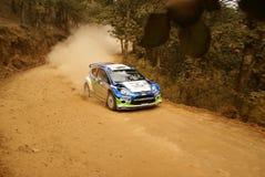 PUENTE DE VAROLIO 2010 de México Javier de la reunión de la corona de WRC imágenes de archivo libres de regalías