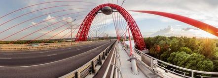 Puente de Zhivopisni. Moscú Rusia Imagen de archivo libre de regalías