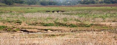 Puente del abandono en lado del país Imagen de archivo