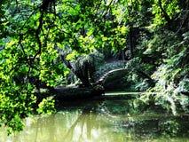Puente del amor en el arboreto de Krasnokutsky Imágenes de archivo libres de regalías