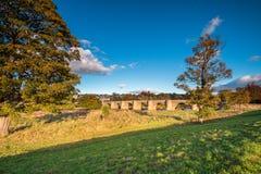 Puente del camino de Corbridge en otoño Foto de archivo