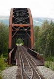 Puente 3 del carril Fotografía de archivo