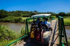 Puente del carro de los jugadores de golf Imagen de archivo libre de regalías