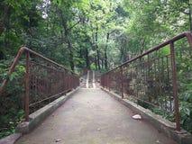Puente del cemento Imágenes de archivo libres de regalías