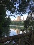 Puente del Central Park del top de Nueva York fotografía de archivo libre de regalías