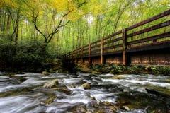 Puente del diente de Autumn Color Begins On The Kephart Fotos de archivo