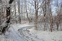 Puente del hielo en bosque del invierno fotos de archivo libres de regalías