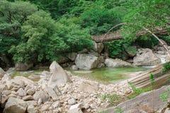 Puente del hierro sobre el río de la montaña Imágenes de archivo libres de regalías