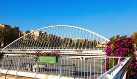 Puente del Hospital over Segura  in  Murcia Stock Photography