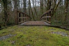 Puente del país fotografía de archivo