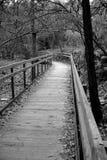 Puente del parque Fotografía de archivo libre de regalías