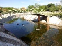 Puente del paso elevado Fotos de archivo
