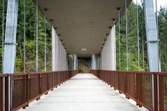 Puente del río de Elwha imagen de archivo