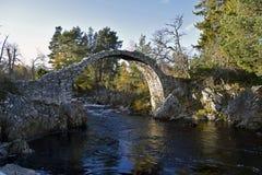Puente del siglo XVIII antiguo del caballo de carga en el carrbridge Escocia imagenes de archivo