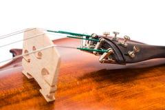 Puente del violín y sintonizadores finos Imágenes de archivo libres de regalías