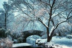 Puente durante invierno, Central Park New York City de Gapstow EE.UU. fotos de archivo