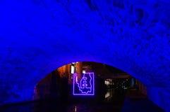 Puente e ilustraciones azules en Georgetown en la noche Fotos de archivo