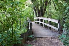 Puente en el bosque Fotos de archivo