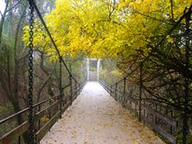 Puente en el bosque Fotografía de archivo libre de regalías