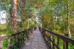 Puente en el bosque en Suecia Fotos de archivo libres de regalías