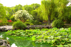 Puente en el jardín del administrador humilde en Suzhou, China Foto de archivo libre de regalías