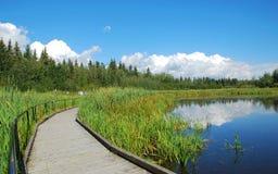 Puente en el lago Imagenes de archivo
