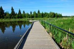 Puente en el lago Fotografía de archivo libre de regalías